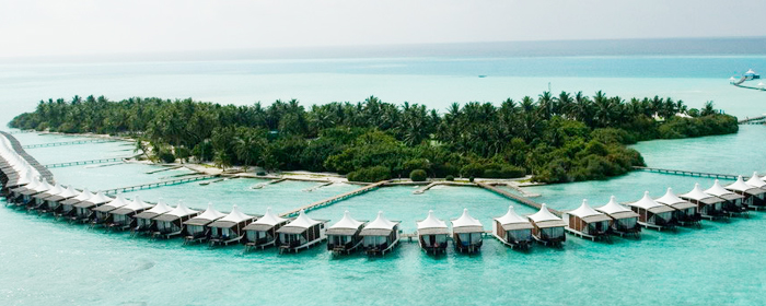 Maldives Honeymooners' Delight